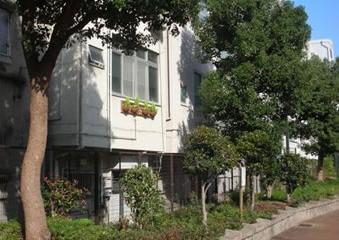 東横堀川:プロジェクトの成果|水都大阪